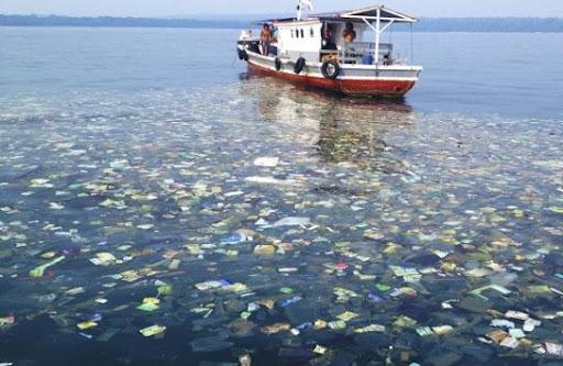 Об экологической ситуации на острове «Вавада»